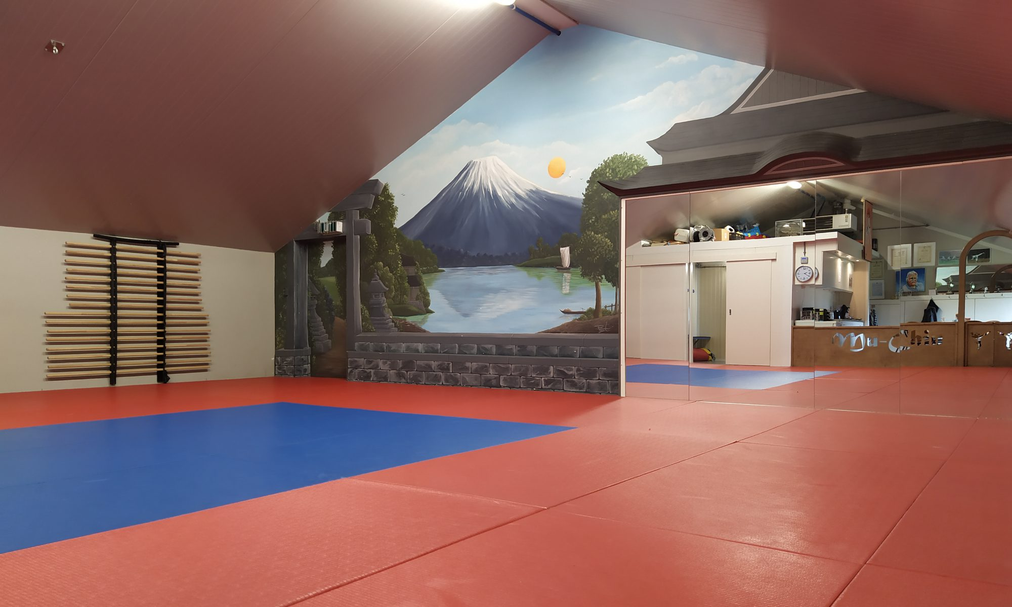 Karate Mu Chin Zieuwent